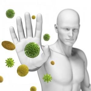 Программа Профилактика иммунитета